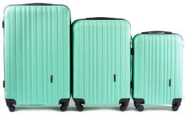 2011, Luggage 3 sets (L,M,S) Wings, Light green