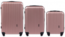 2011, Luggage 3 sets (L,M,S) Wings, Rose gold